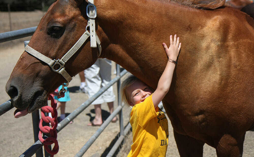 Young Camper Hugs Her Favorite Horse at Riding