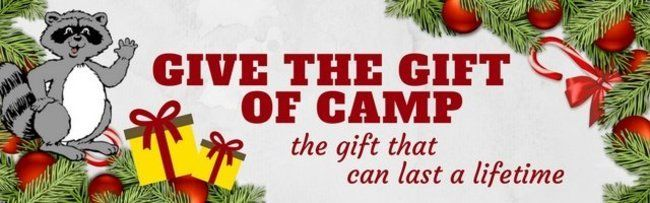 Gift-of-Camp-Newsletter-Banner.jpg